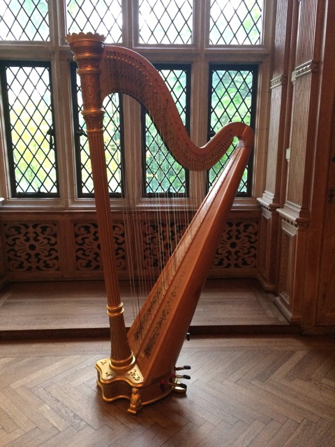 Glen Ellyn harpist Wheaton Illinois